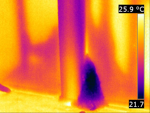 Termite Thermal Image Inspection